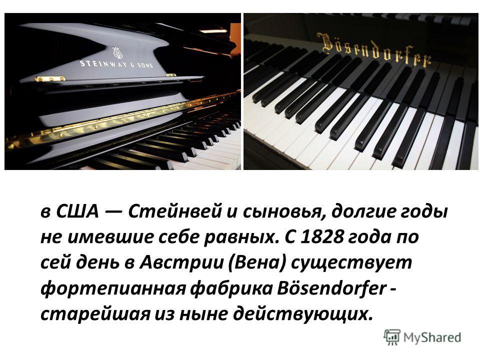 в США Стейнвей и сыновья, долгие годы не имевшие себе равных. С 1828 года по сей день в Австрии (Вена) существует фортепианная фабрика Bösendorfer - старейшая из ныне действующих.
