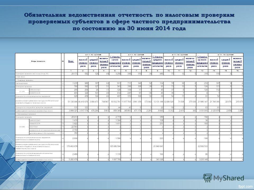 Обязательная ведомственная отчетность по налоговым проверкам проверяемых субъектов в сфере частного предпринимательства по состоянию на 30 июня 2014 года