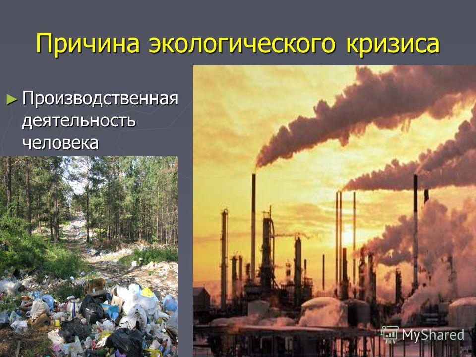 Причина экологического кризиса Производственная деятельность человека Производственная деятельность человека