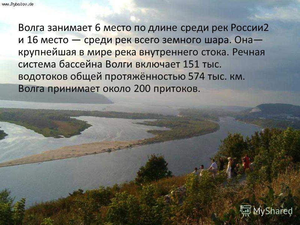 Волга занимает 6 место по длине среди рек России 2 и 16 место среди рек всего земного шара. Она крупнейшая в мире река внутреннего стока. Речная система бассейна Волги включает 151 тыс. водотоков общей протяжённостью 574 тыс. км. Волга принимает окол