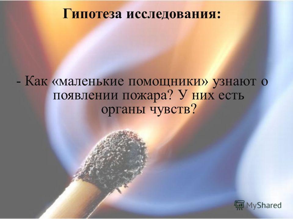 Гипотеза исследования : - Как « маленькие помощники » узнают о появлении пожара ? У них есть органы чувств ?