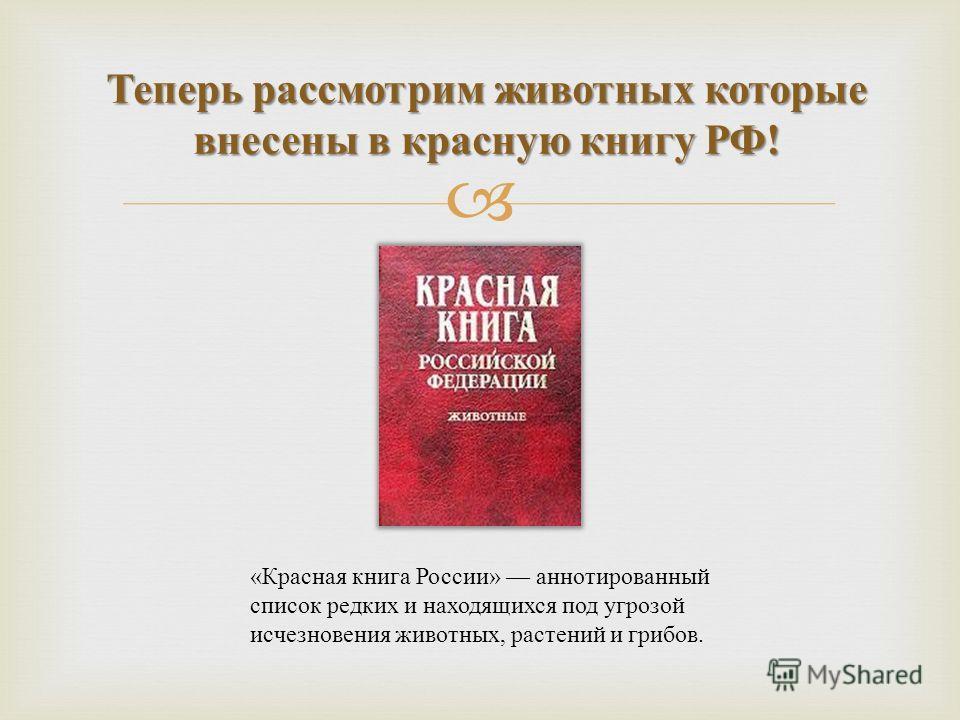 Теперь рассмотрим животных которые внесены в красную книгу РФ ! « Красная книга России » аннотированный список редких и находящихся под угрозой исчезновения животных, растений и грибов.