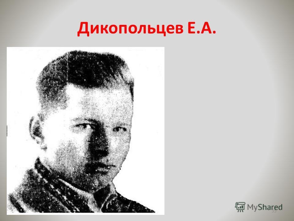 Дикопольцев Е.А. 35