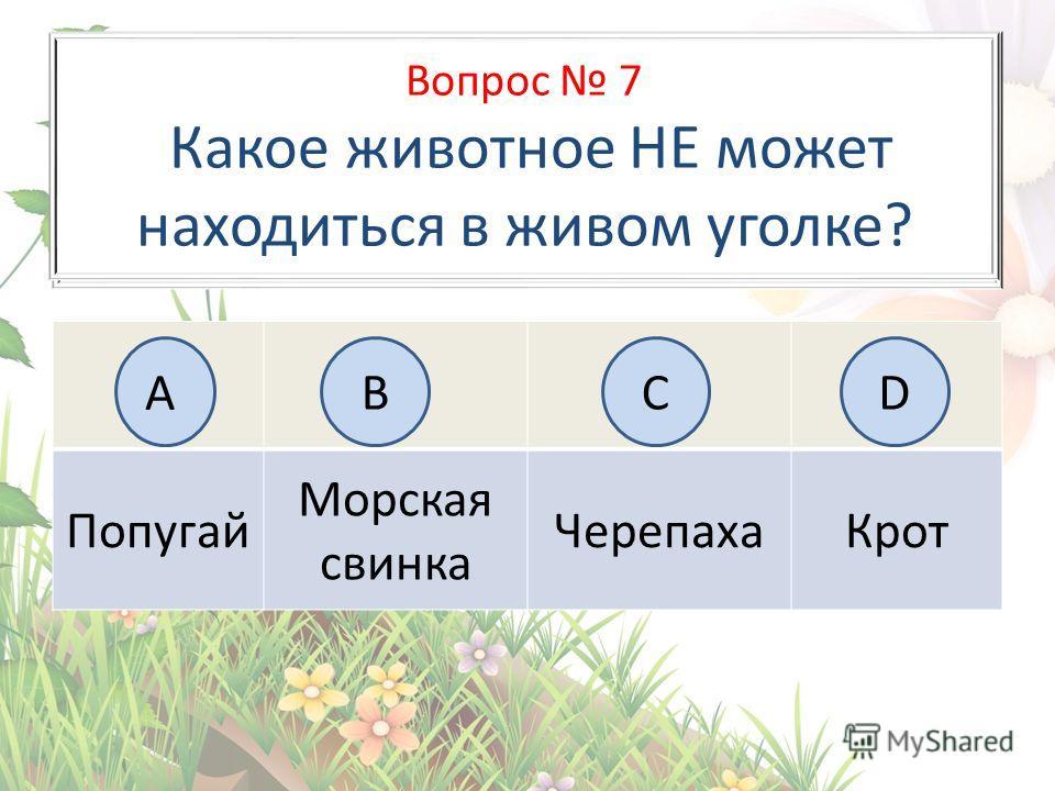 Вопрос 6 На каком рисунке изображён флаг России? Попугай Морская свинка Черепаха Крот АB BCD Вопрос 7 Какое животное НЕ может находиться в живом уголке?