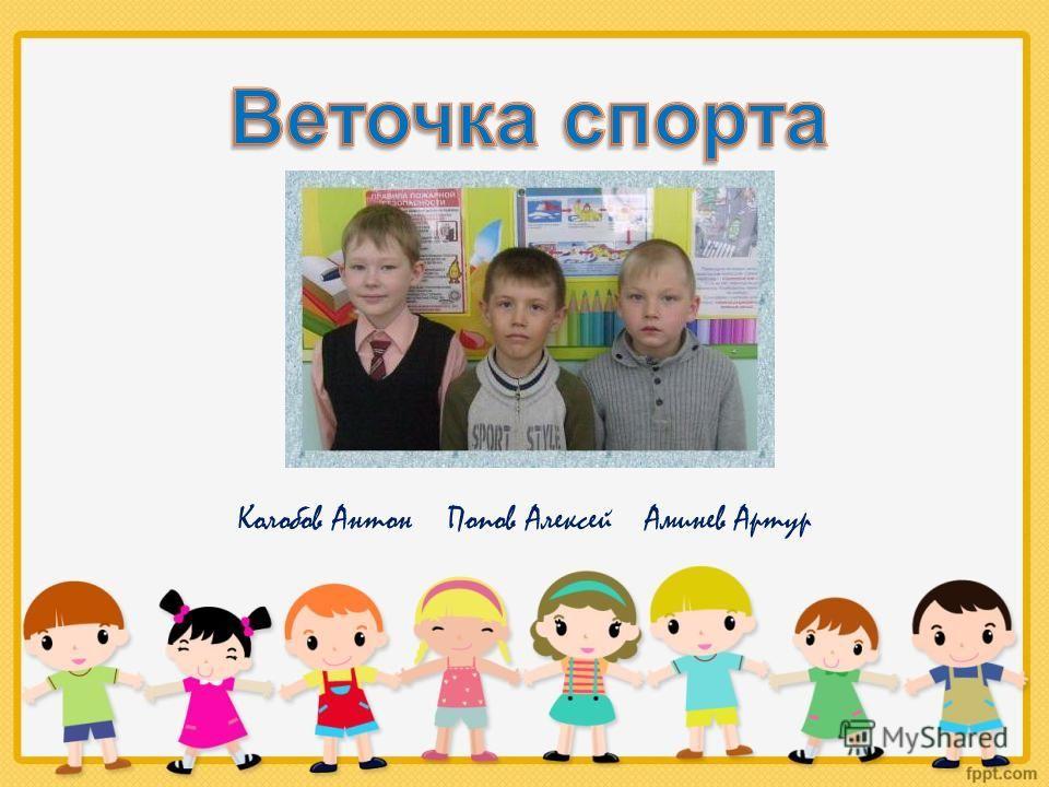 Колобов Антон Попов Алексей Аминев Артур