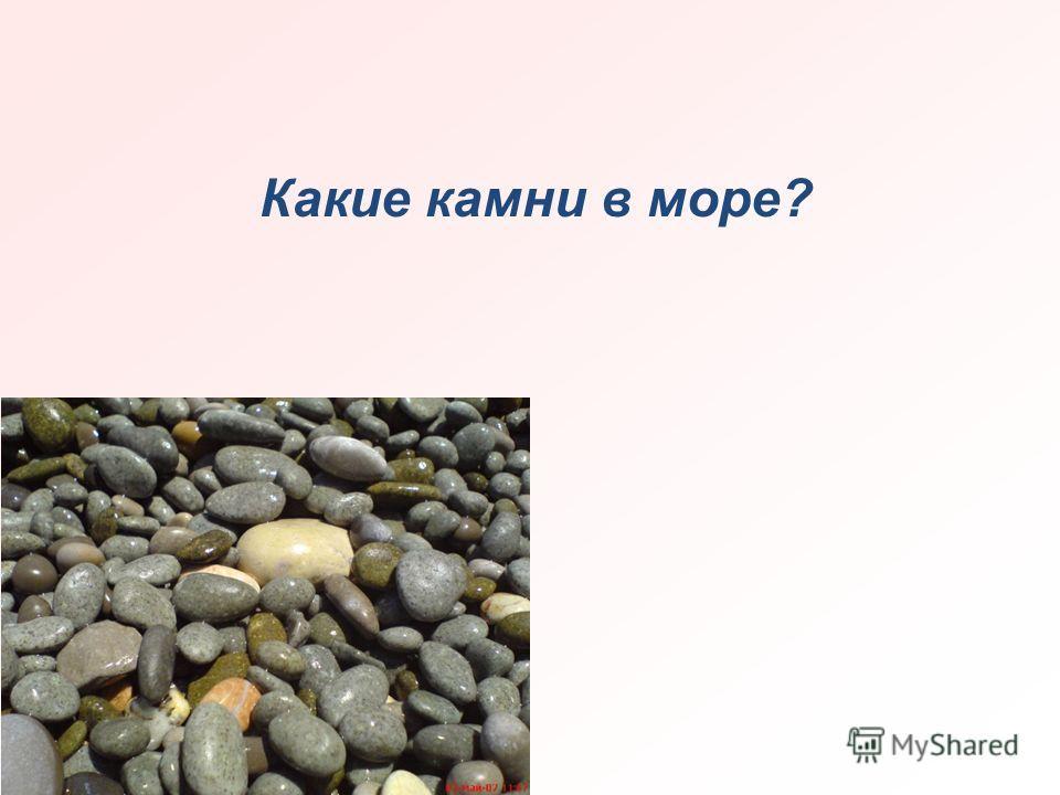 Какие камни в море?