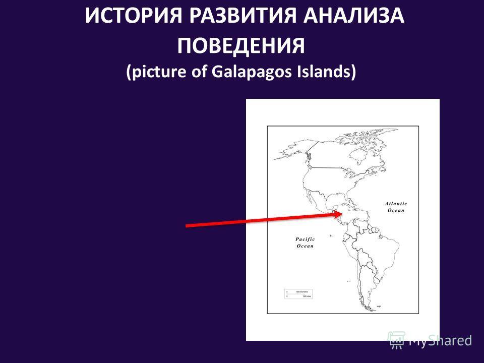 ИСТОРИЯ РАЗВИТИЯ АНАЛИЗА ПОВЕДЕНИЯ (picture of Galapagos Islands)