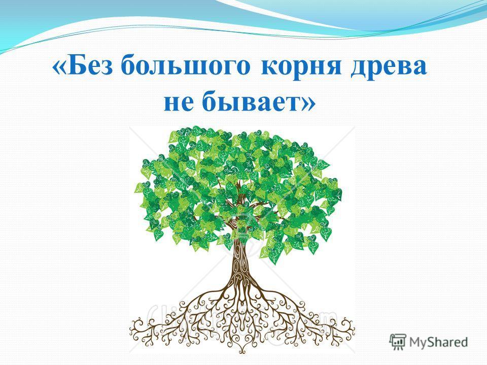 «Без большого корня древа не бывает»