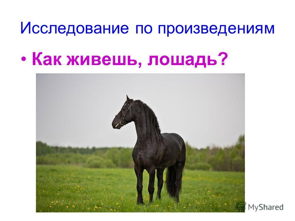 Исследование по произведениям Как живешь, лошадь?