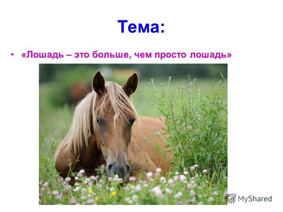 Тема: «Лошадь – это больше, чем просто лошадь»