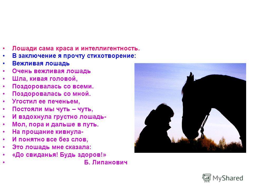 Лошади сама краса и интеллигентность. В заключение я прочту стихотворение: Вежливая лошадь Очень вежливая лошадь Шла, кивая головой, Поздоровалась со всеми. Поздоровалась со мной. Угостил ее печеньем, Постояли мы чуть – чуть, И вздохнула грустно лоша