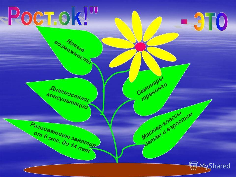 Негосударственное образовательное учреждение «Учебный центр «Рост.ok!» - зарегистрирован, как некоммерческая организация 1 июня 2006 г. Лицензия на право ведения образовательной деятельности (серия РО 004288)–рег. 6991 от 20 июля 2011 г. Цель деятель