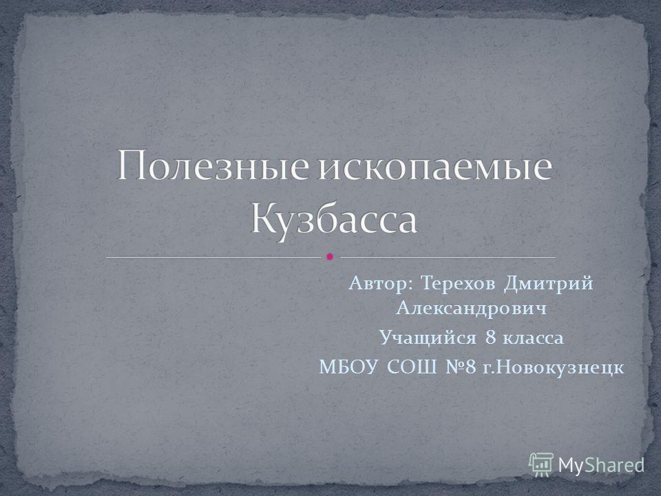 Автор: Терехов Дмитрий Александрович Учащийся 8 класса МБОУ СОШ 8 г.Новокузнецк