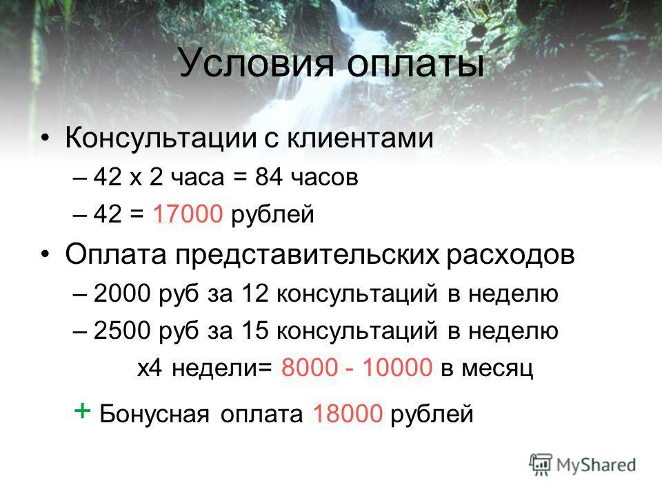Условия оплаты Консультации с клиентами –42 x 2 часа = 84 часов –42 = 17000 рублей Оплата представительских расходов –2000 руб за 12 консультаций в неделю –2500 руб за 15 консультаций в неделю x4 недели= 8000 - 10000 в месяц + Бонусная оплата 18000 р