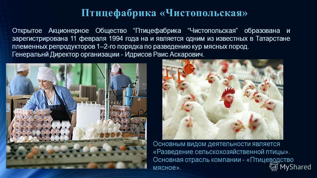 Птицефабрика «Чистопольская» Открытое Акционерное Общество Птицефабрика Чистопольская образована и зарегистрирована 11 февраля 1994 года на и является одним из известных в Татарстане племенных репродукторов 1–2-го порядка по разведению кур мясных пор