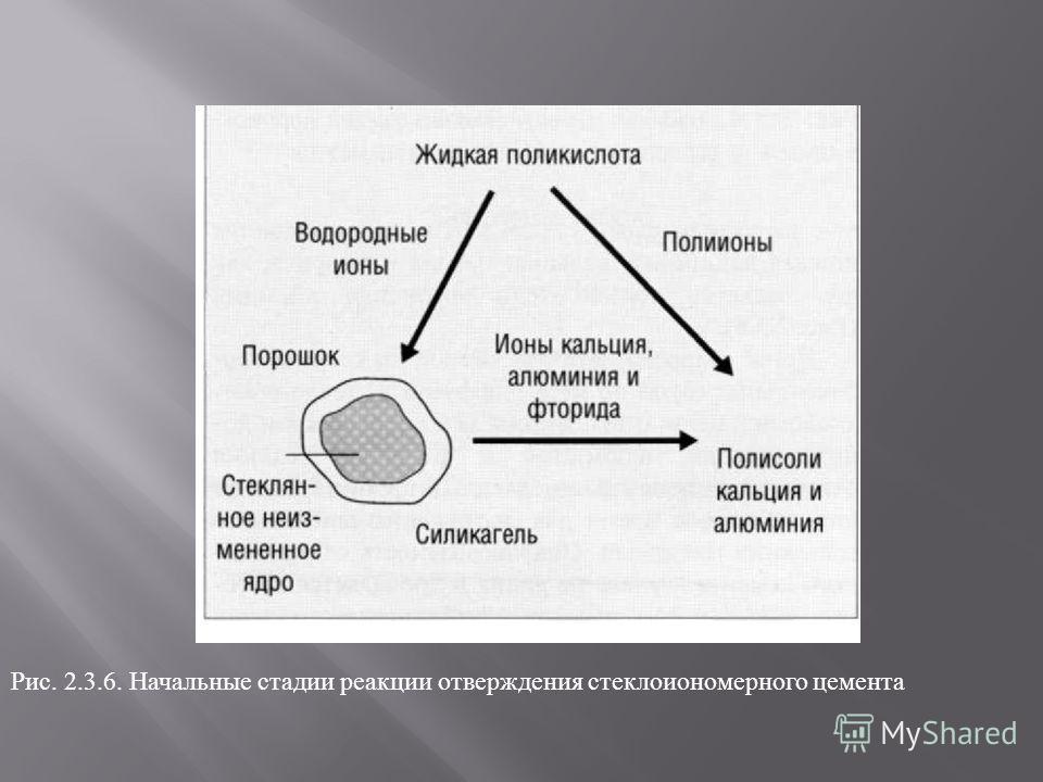Рис. 2.3.6. Начальные стадии реакции отверждения стеклоиономерного цемента