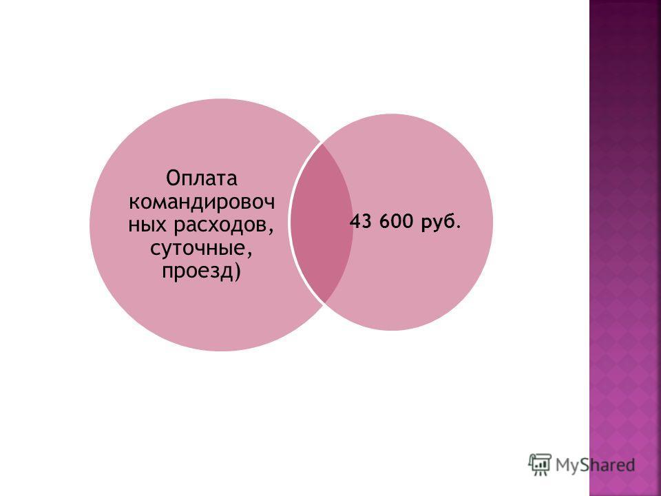 Оплата командировочных расходов, суточные, проезд) 43 600 руб.
