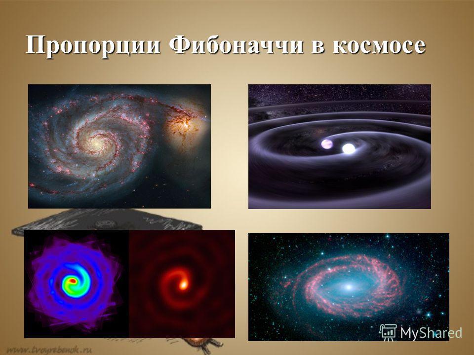 Пропорции Фибоначчи в космосе