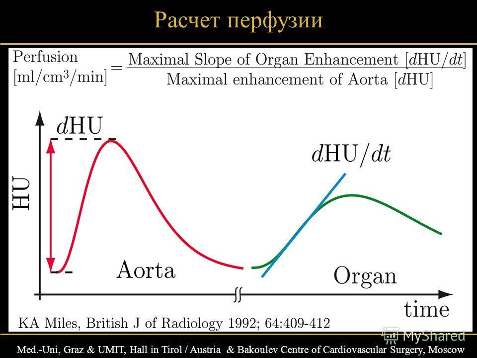 Med.-Uni, Graz & UMIT, Hall in Tirol / Austria & Bakoulev Centre of Cardiovascular Surgery, Moscow Расчет перфузии