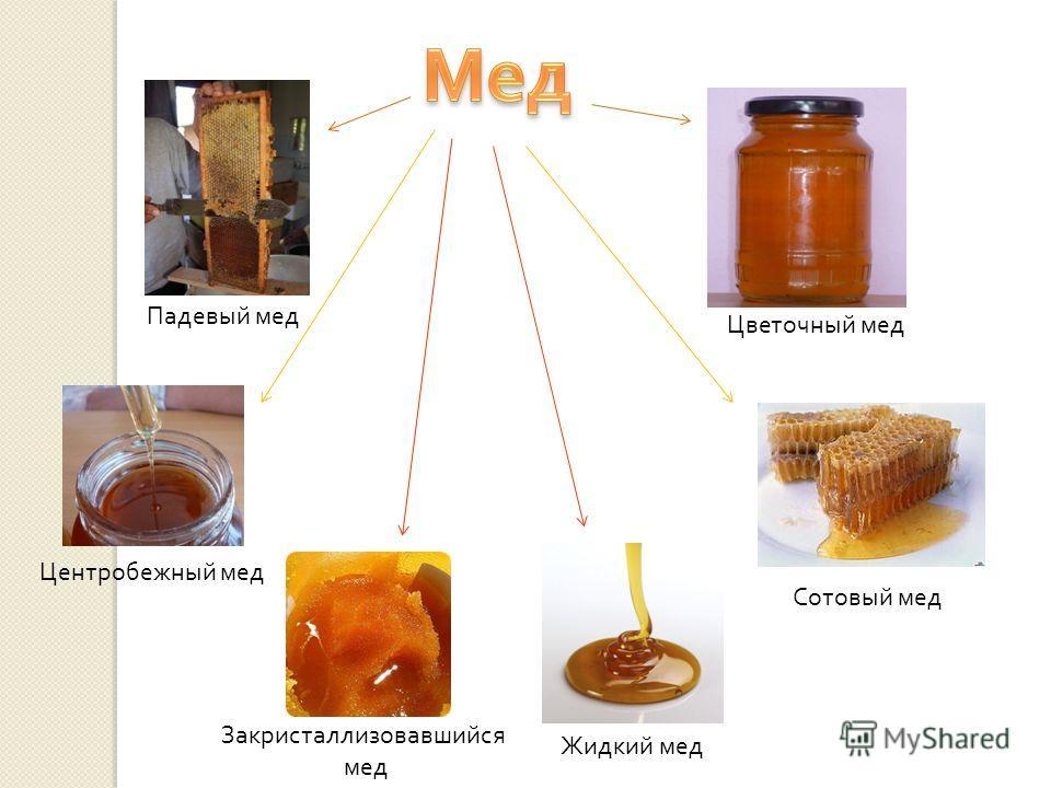 Падевый мед Цветочный мед Сотовый мед Центробежный мед Закристаллизовавшийся мед Жидкий мед