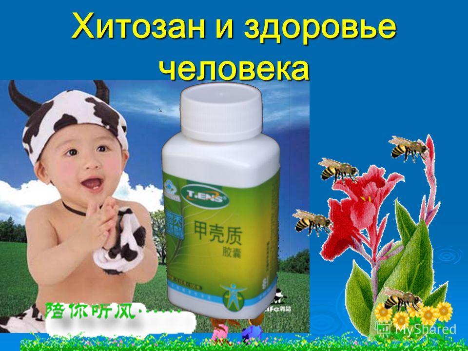 Хитозан и здоровье человека Хитозан и здоровье человека