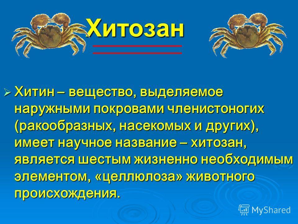Хитозан Хитин – вещество, выделяемое наружными покровами членистоногих (ракообразных, насекомых и других), имеет научное название – хитозан, является шестым жизненно необходимым элементом, «целлюлоза» животного происхождения. Хитин – вещество, выделя