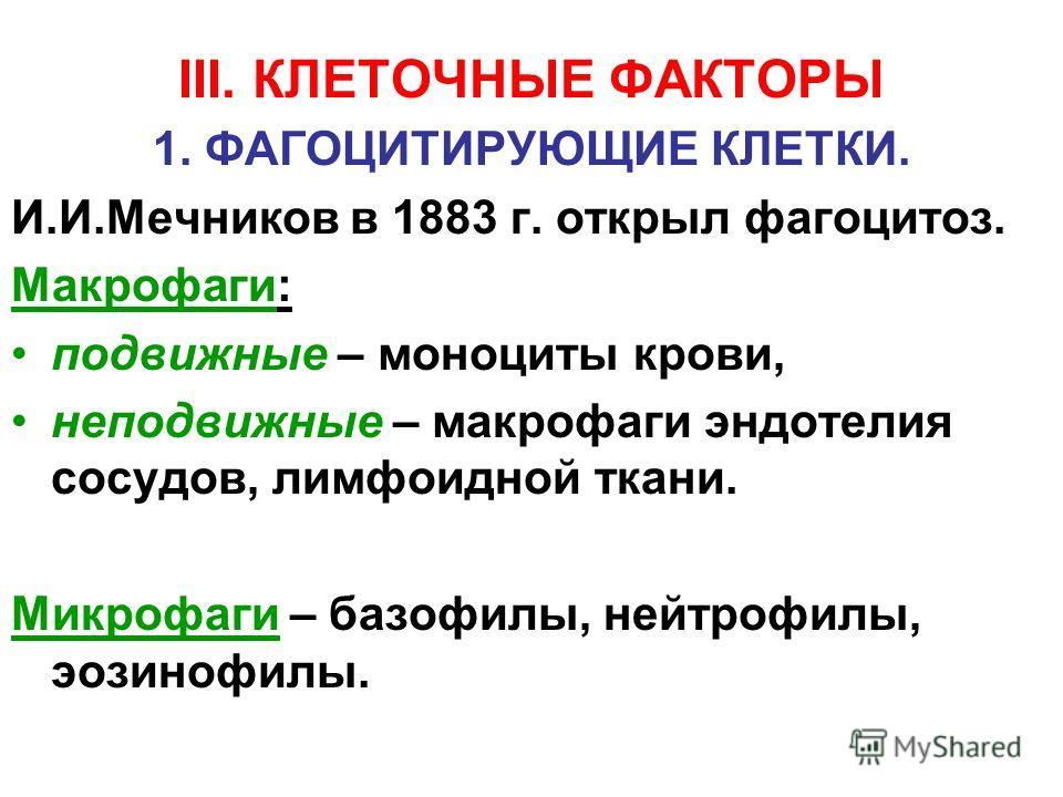 III. КЛЕТОЧНЫЕ ФАКТОРЫ 1. ФАГОЦИТИРУЮЩИЕ КЛЕТКИ. И.И.Мечников в 1883 г. открыл фагоцитоз. Макрофаги: подвижные – моноциты крови, неподвижные – макрофаги эндотелия сосудов, лимфоидной ткани. Микрофаги – базофилы, нейтрофилы, эозинофилы.