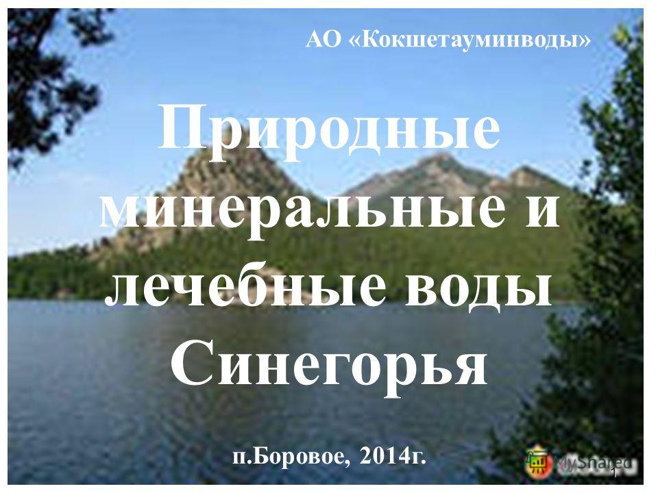1 Природные минеральные и лечебные воды Синегорья п.Боровое, 2014 г. АО «Кокшетауминводы»