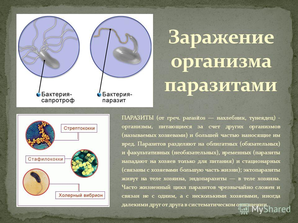 ПАРАЗИТЫ (от греч. parasitos нахлебник, тунеядец) - организмы, питающиеся за счет других организмов (называемых хозяевами) и большей частью наносящие им вред. Паразитов разделяют на облигатных (обязательных) и факультативных (необязательных), временн