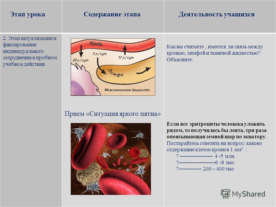 Этап урока Содержание этапа Деятельность учащихся 2. Этап актуализации и фиксирования индивидуального затруднения в пробном учебном действии Прием «Ситуация яркого пятна» Как вы считаете, имеется ли связь между кровью, лимфой и тканевой жидкостью? Об