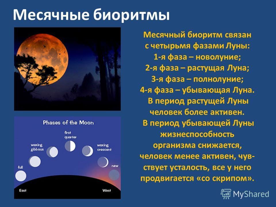 Месячные биоритмы Месячный биоритм связан с четырьмя фазами Луны: 1-я фаза – новолуние; 2-я фаза – растущая Луна; 3-я фаза – полнолуние; 4-я фаза – убывающая Луна. В период растущей Луны человек более активен. В период убывающей Луны жизнеспособность