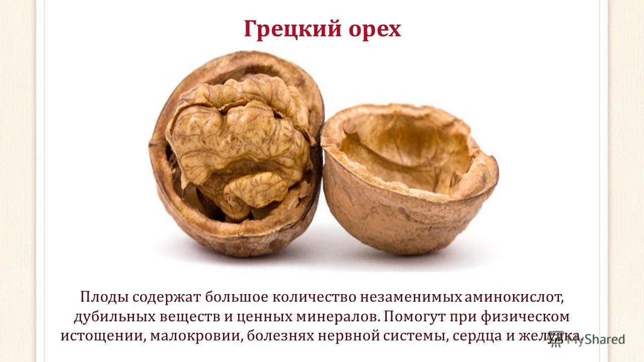 Грецкий орех Плоды содержат большое количество незаменимых аминокислот, дубильных веществ и ценных минералов. Помогут при физическом истощении, малокровии, болезнях нервной системы, сердца и желудка.
