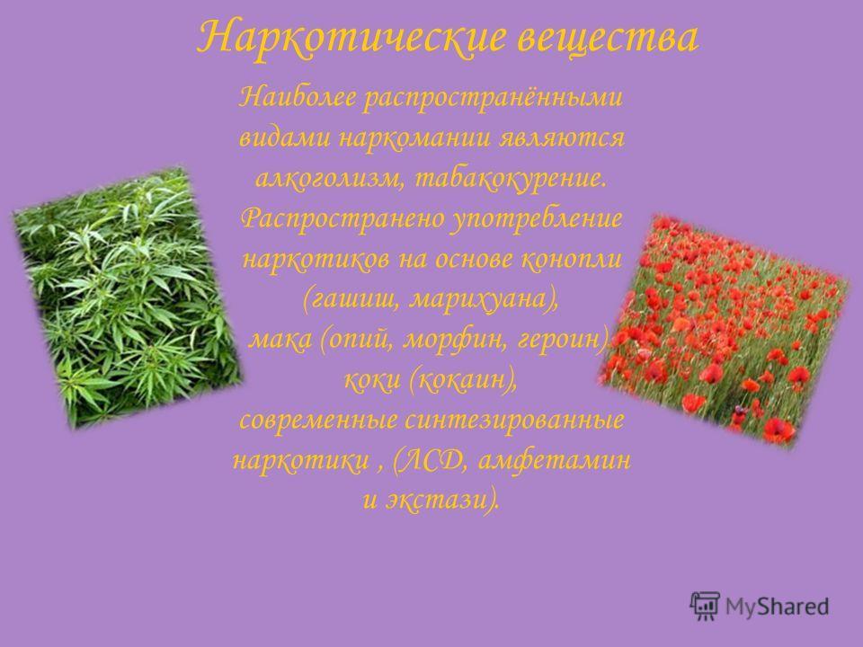 Наркотические вещества Наиболее распространёнными видами наркомании являются алкоголизм, табакокурение. Распространено употребление наркотиков на основе конопли (гашиш, марихуана), мака (опий, морфин, героин), коки (кокаин), современные синтезированн