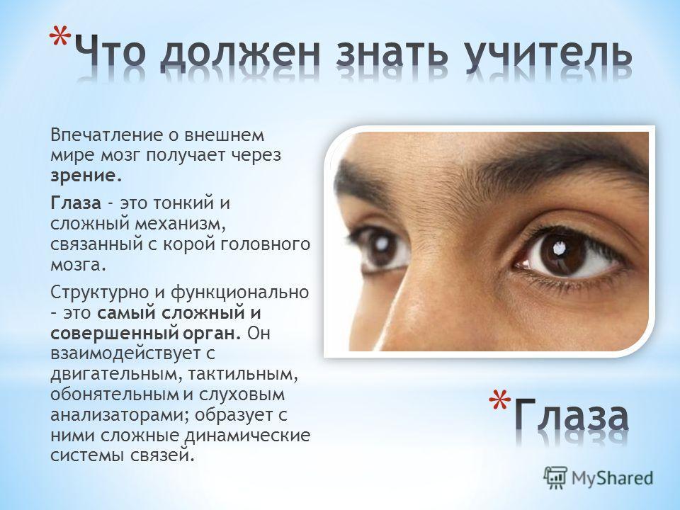 Впечатление о внешнем мире мозг получает через зрение. Глаза - это тонкий и сложный механизм, связанный с корой головного мозга. Структурно и функционально – это самый сложный и совершенный орган. Он взаимодействует с двигательным, тактильным, обонят