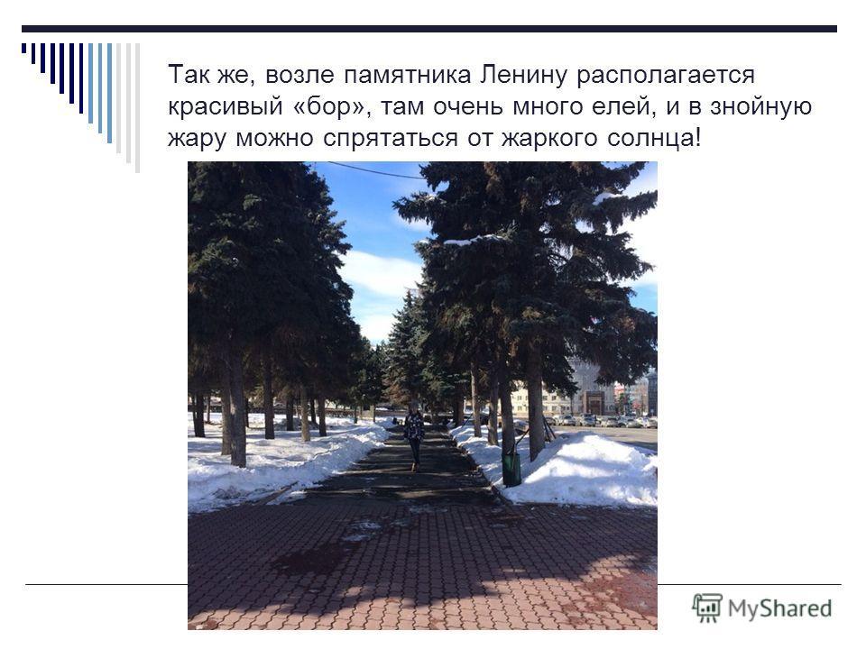 Так же, возле памятника Ленину располагается красивый «бор», там очень много елей, и в знойную жару можно спрятаться от жаркого солнца!