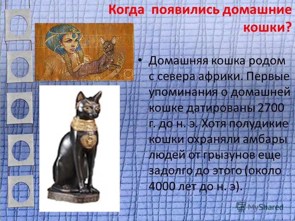 Когда появились домашние кошки? Домашняя кошка родом с севера африки. Первые упоминания о домашней кошке датированы 2700 г. до н. э. Хотя полудикие кошки охраняли амбары людей от грызунов еще задолго до этого (около 4000 лет до н. э).