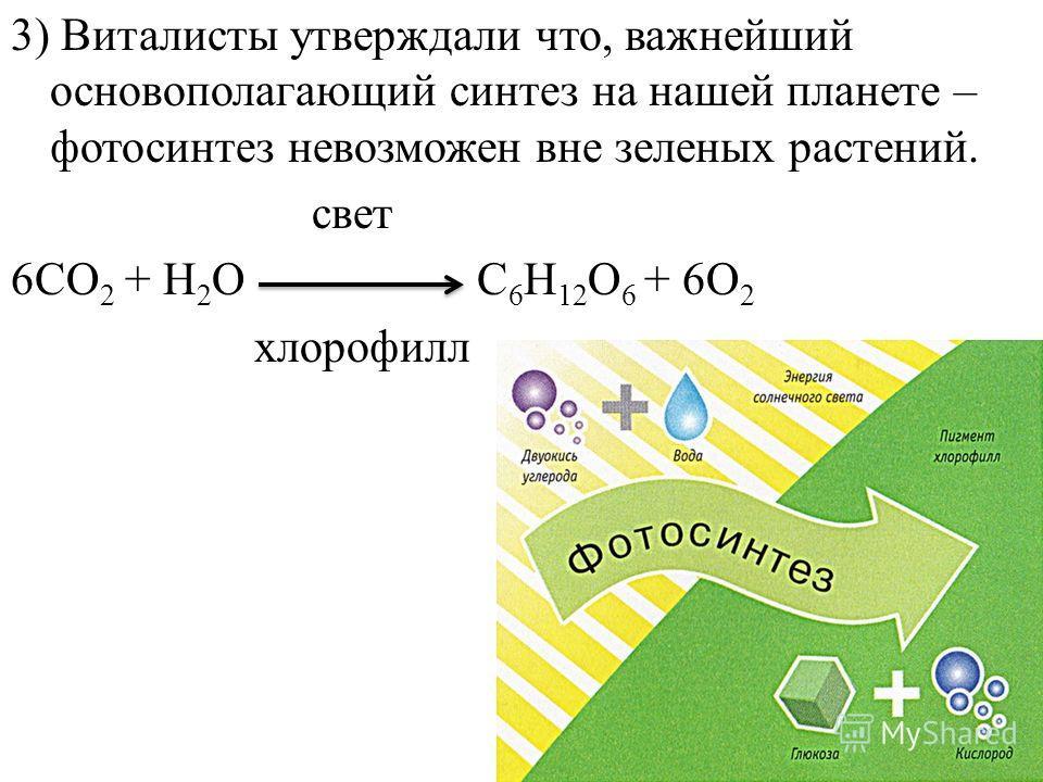 3) Виталисты утверждали что, важнейший основополагающий синтез на нашей планете – фотосинтез невозможен вне зеленых растений. свет 6CO 2 + H 2 O C 6 H 12 O 6 + 6O 2 хлорофилл