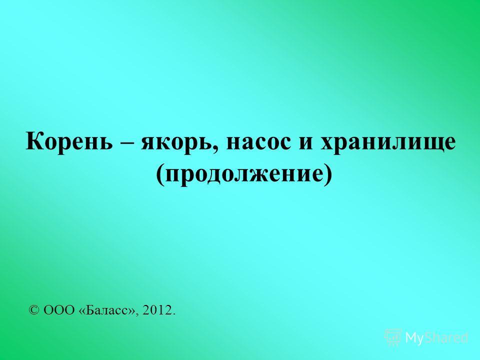 Корень – якорь, насос и хранилище (продолжение) © ООО «Баласс», 2012.