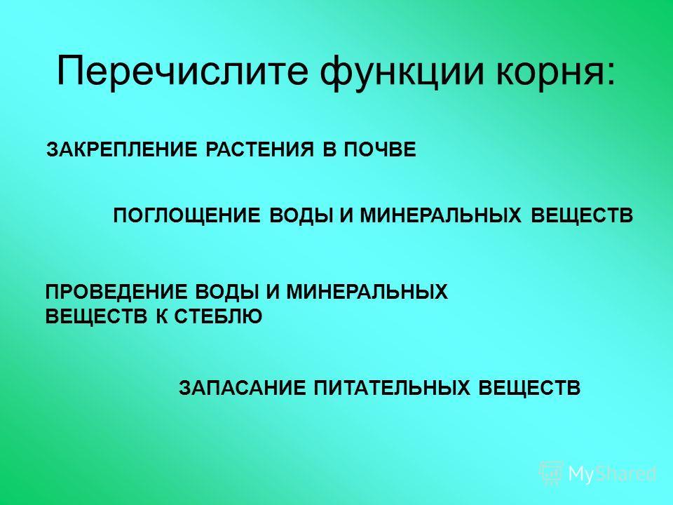 Перечислите функции корня: ЗАКРЕПЛЕНИЕ РАСТЕНИЯ В ПОЧВЕ ПОГЛОЩЕНИЕ ВОДЫ И МИНЕРАЛЬНЫХ ВЕЩЕСТВ ПРОВЕДЕНИЕ ВОДЫ И МИНЕРАЛЬНЫХ ВЕЩЕСТВ К СТЕБЛЮ ЗАПАСАНИЕ ПИТАТЕЛЬНЫХ ВЕЩЕСТВ
