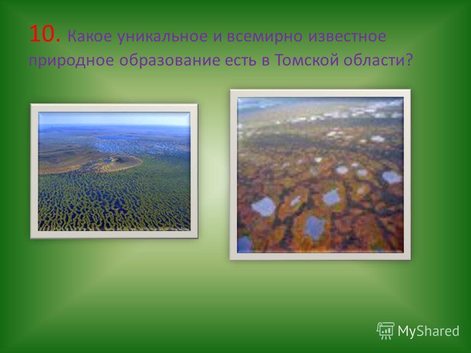 10. Какое уникальное и всемирно известное природное образование есть в Томской области?