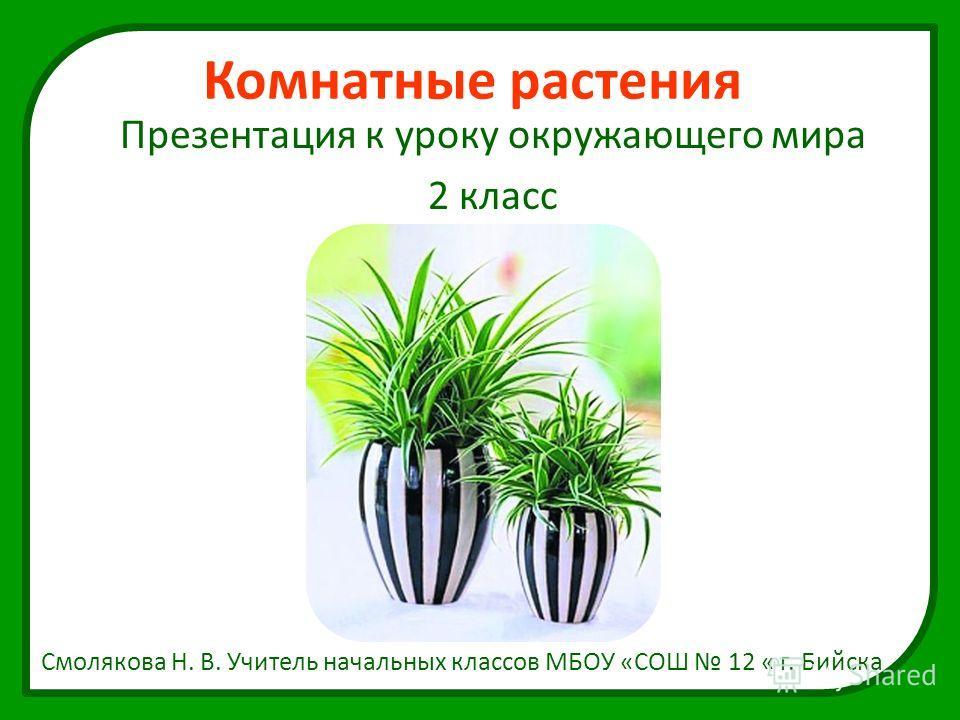 Комнатные растения Презентация к уроку окружающего мира 2 класс Смолякова Н. В. Учитель начальных классов МБОУ «СОШ 12 « г. Бийска