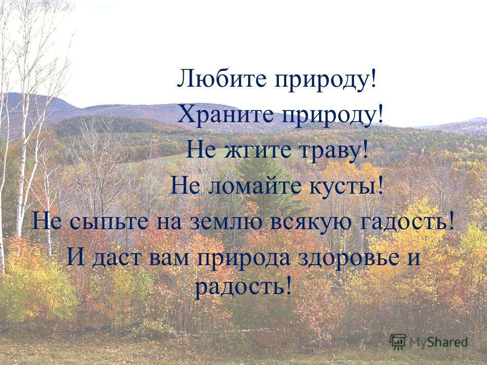 Любите природу! Храните природу! Не жгите траву! Не ломайте кусты! Не сыпьте на землю всякую гадость! И даст вам природа здоровье и радость!