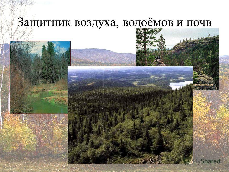 Защитник воздуха, водоёмов и почв