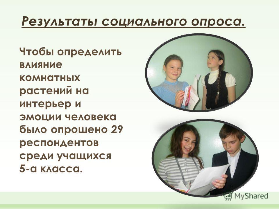 Результаты социального опроса. Чтобы определить влияние комнатных растений на интерьер и эмоции человека было опрошено 29 респондентов среди учащихся 5-а класса.