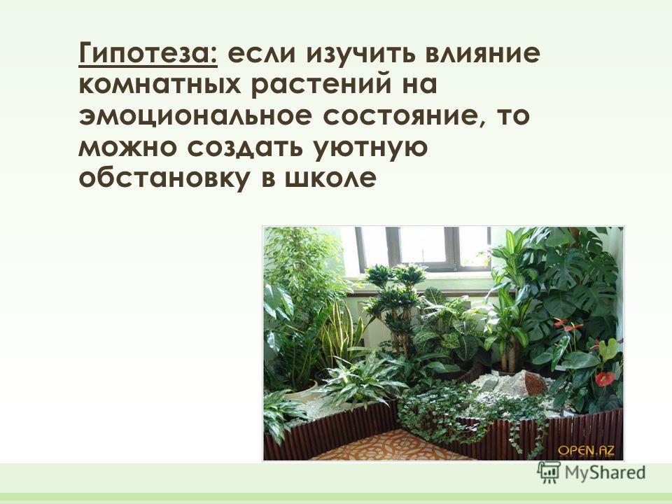 Гипотеза: если изучить влияние комнатных растений на эмоциональное состояние, то можно создать уютную обстановку в школе