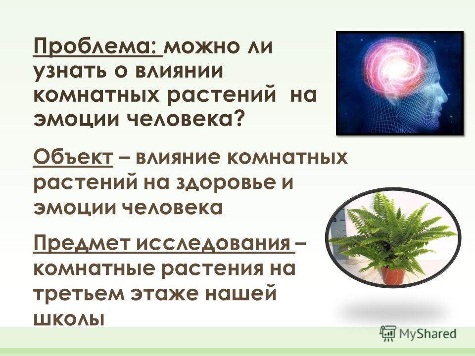 Проблема: можно ли узнать о влиянии комнатных растений на эмоции человека? Объект – влияние комнатных растений на здоровье и эмоции человека Предмет исследования – комнатные растения на третьем этаже нашей школы