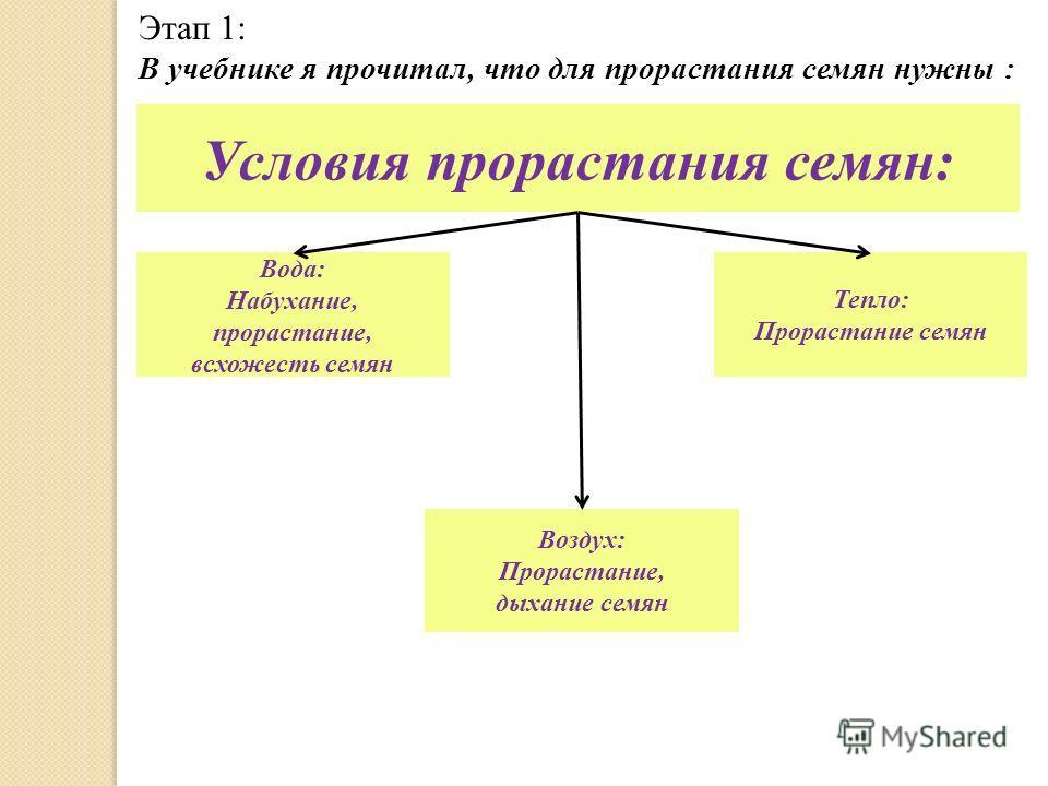 Этап 1: В учебнике я прочитал, что для прорастания семян нужны : Условия прорастания семян: Вода: Набухание, прорастание, всхожесть семян Воздух: Прорастание, дыхание семян Тепло: Прорастание семян