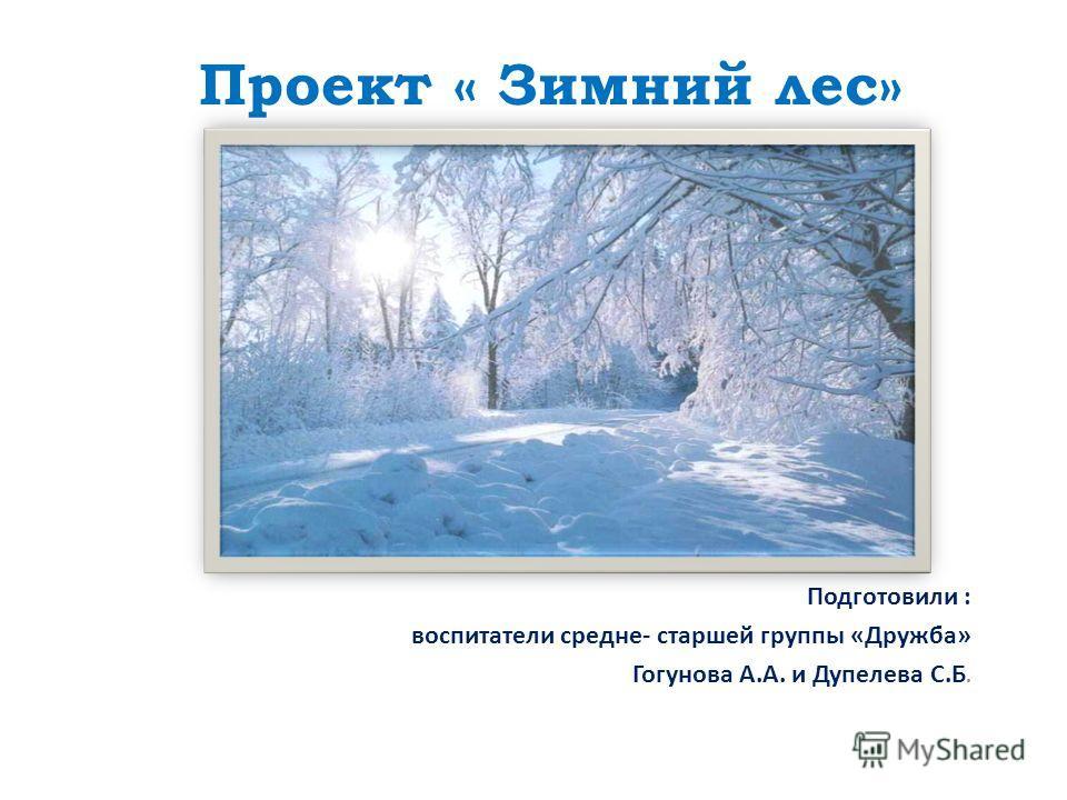 Проект « Зимний лес» Подготовили : воспитатели средне- старшей группы «Дружба» Гогунова А.А. и Дупелева С.Б.