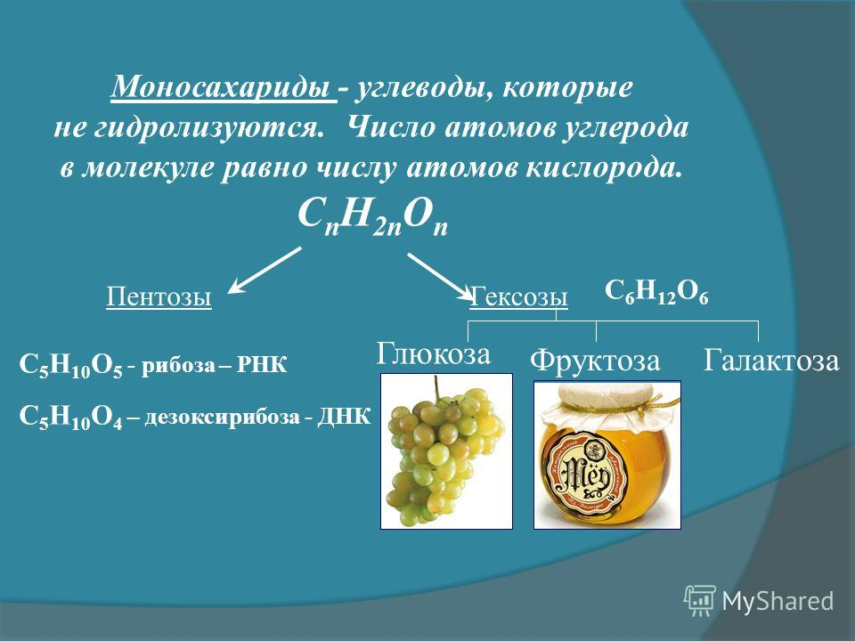 Моносахариды - углеводы, которые не гидролизуются. Число атомов углерода в молекуле равно числу атомов кислорода. С n Н 2n О n Гексозы Пентозы C 5 H 10 O 5 - рибоза – РНК C 5 H 10 O 4 – дезоксирибоза - ДНК C 6 H 12 O 6 Глюкоза Фруктоза Галактоза
