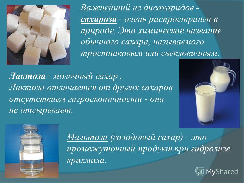 Важнейший из дисахаридов - сахароза - очень распространен в природе. Это химическое название обычного сахара, называемого тростниковым или свекловичным. Лактоза - молочный сахар. Лактоза отличается от других сахаров отсутствием гигроскопичности - она